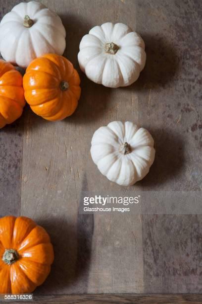 White and Orange Mini Pumpkins, High Angle View