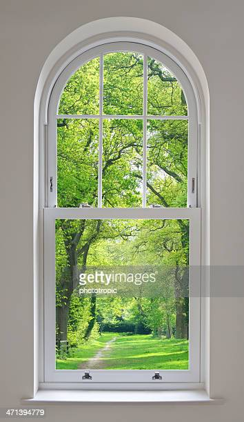 white arched window and parkland view