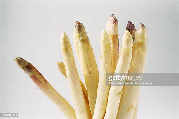 White asparagus, close-up, cropped
