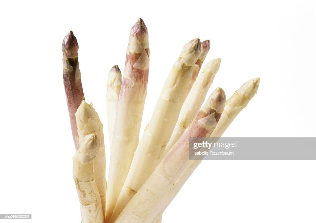 White asparagus tips, close-up : Stock Photo