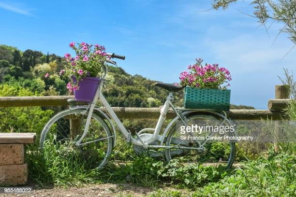 White bicycle decorated with flowers in bloom in rural setting around Florence, Tuscany, Italy