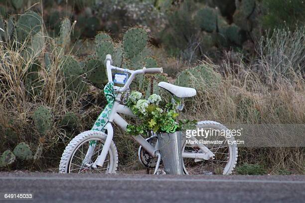 White Bicycle Parked By Road On Field