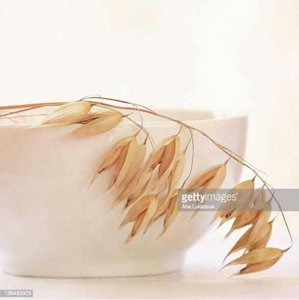 White bowl and oats