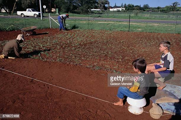 White Boys Watching Black Gardeners