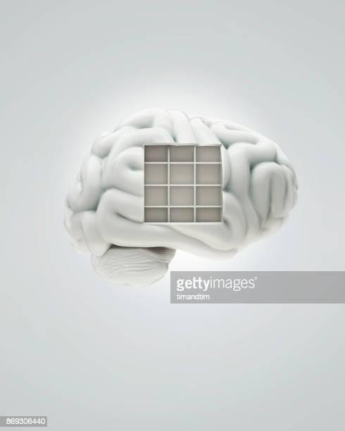 White brain with a bookcase
