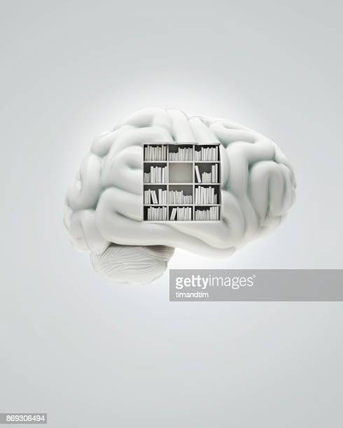 white brain with a bookcase - memories stock pictures, royalty-free photos & images