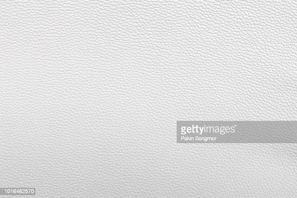 white, bronze, silver leather and texture background - animal body part stock pictures, royalty-free photos & images