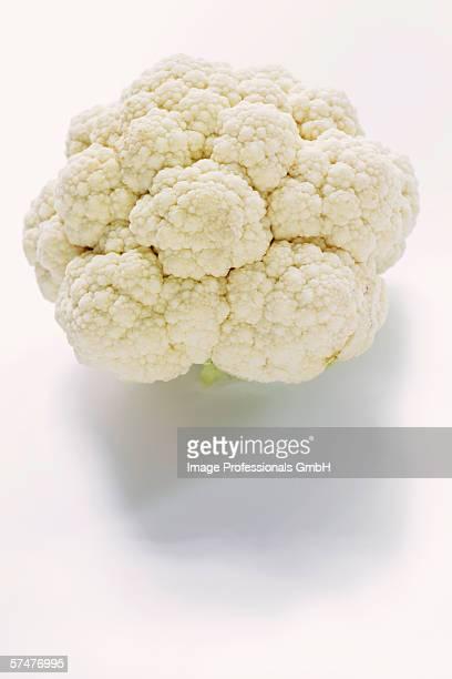 A white cauliflower on white background