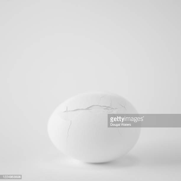 white chicken egg with cracked shell on white background, close up. - animal egg stock pictures, royalty-free photos & images