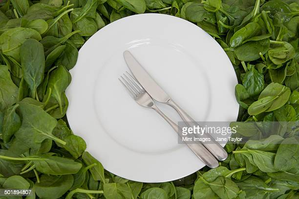 A white china plate with a knife and fork, resting on edible leaves. The concept of healthy eating.