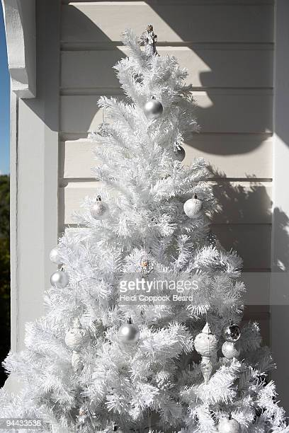 white christmas tree outdoors - heidi coppock beard stock pictures, royalty-free photos & images