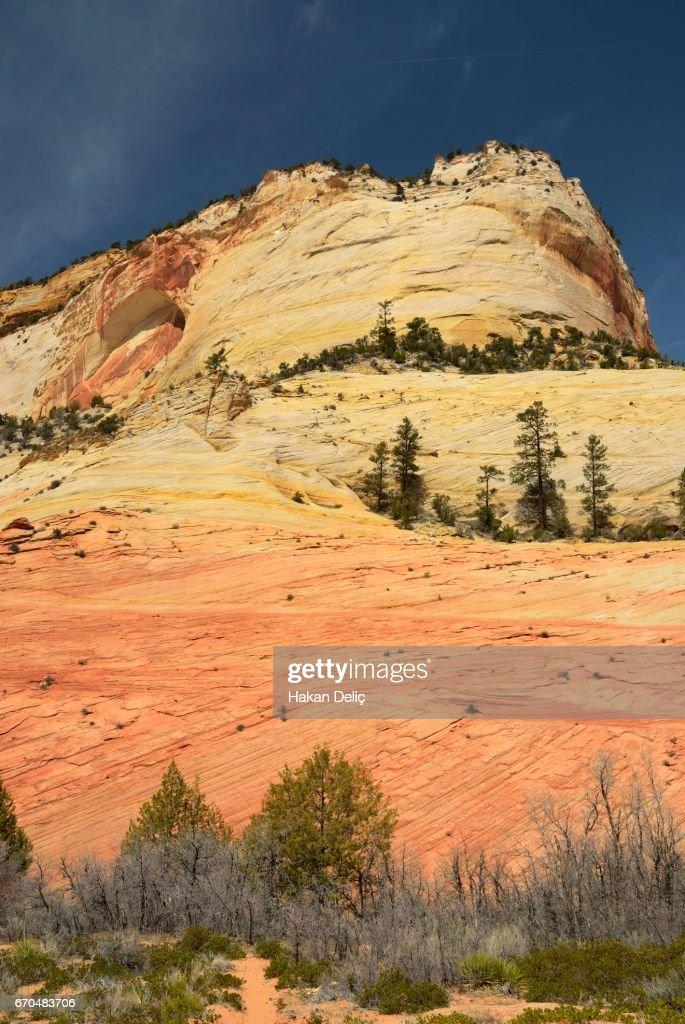 White Cliffs Zion National Park Utah Stock Photo