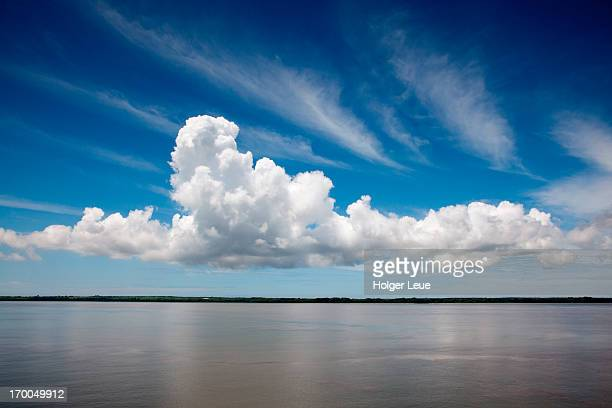 white cloud in blue sky on guayas river - nuvens fofas imagens e fotografias de stock