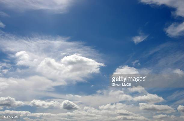white clouds in a bright blue summer sky - blue stock pictures, royalty-free photos & images