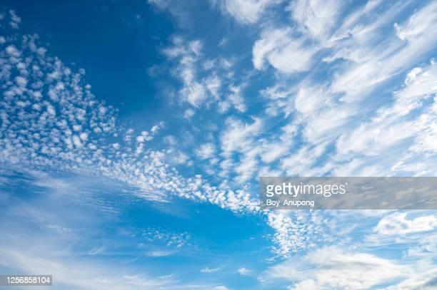 white cumulus clouds appeared on the blue sky. - pureté photos et images de collection