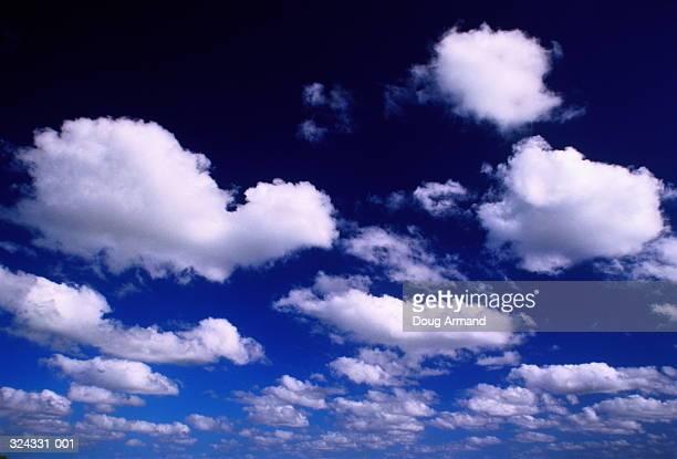 White cumulus clouds in deep blue sky