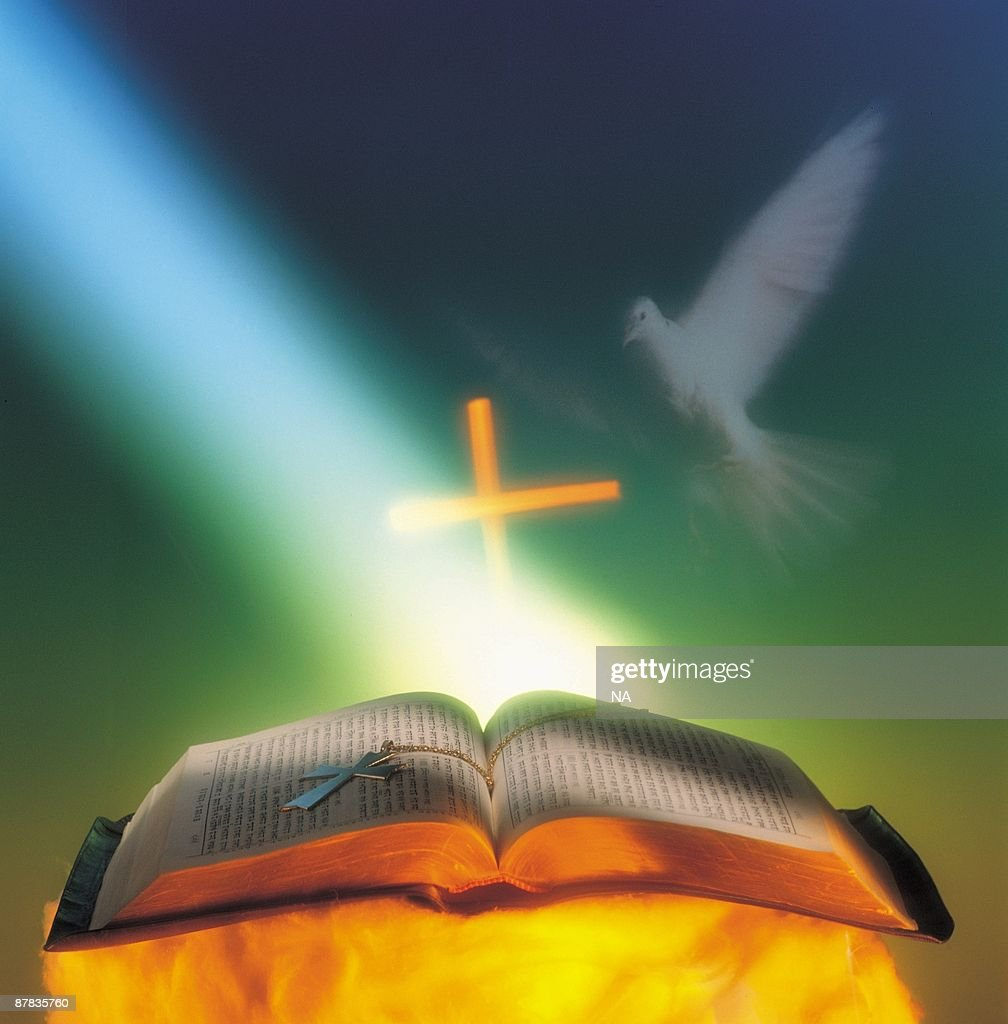 White dove appearing and light shining on Holy Bible : Stock Photo