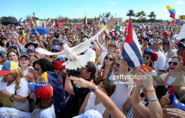 A white dove flies over the crowd after being released as Venezuelans and their supporters show their support with the antigovernment protests in...
