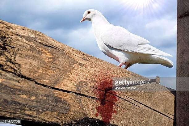 White dove on the empty cross