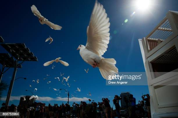 58 white doves are released in honor of the victims of last Sunday's mass shooting at the culmination of a faith unity walk at Las Vegas City Hall on...