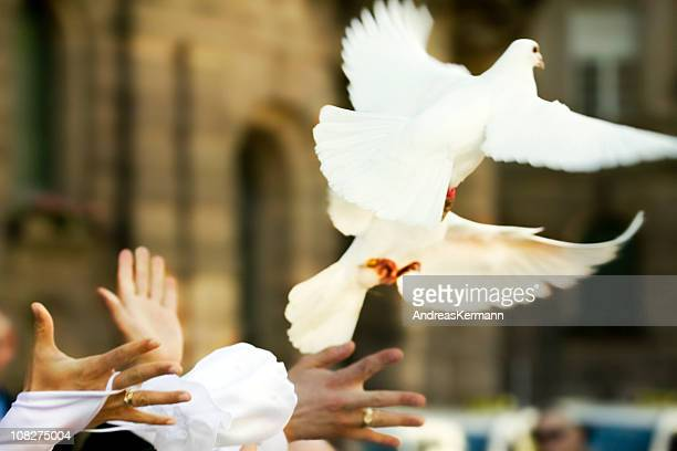 White Doves Flying Away from Newlywed's Hands