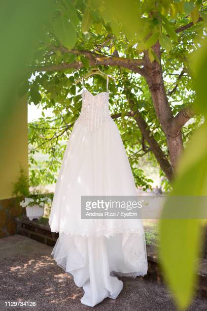 white dress hanging on tree - andrea rizzi stockfoto's en -beelden
