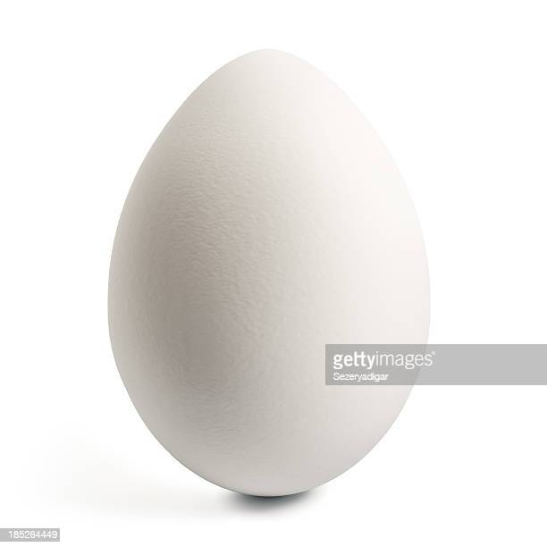 white egg - animal egg stock pictures, royalty-free photos & images