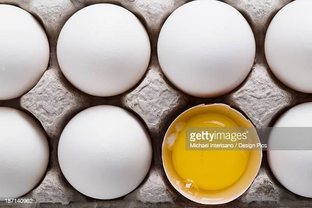 white eggs in a a carton with one brown shelled egg open showing the yoke - yoke stock photos and pictures