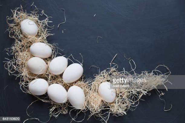 white eggs on black background