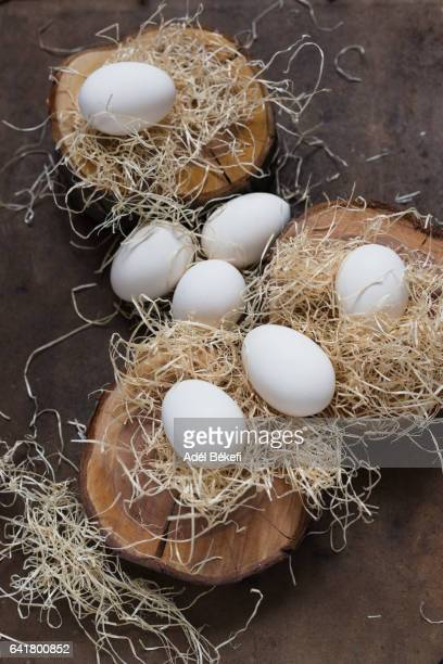 white eggs on brown background