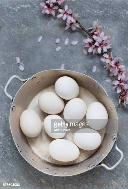 white eggs on gray background with almond blossom
