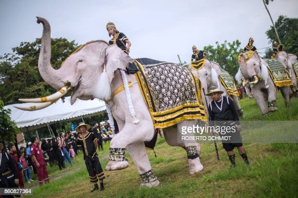 TOPSHOT A white elephant raises its leg during a short procession as people gathered to pay tribute to the late Thai King Bhumibol Adulyadej during a...