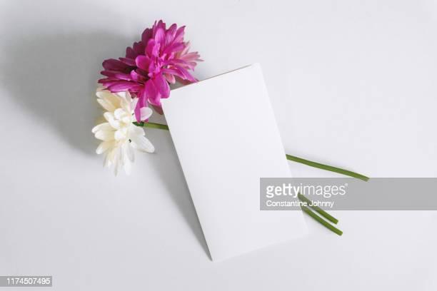 white empty card and flower - wedding invitation imagens e fotografias de stock