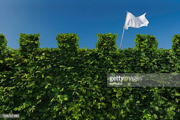 white flag raised above turret hedge - trapped stock pictures, royalty-free photos & images