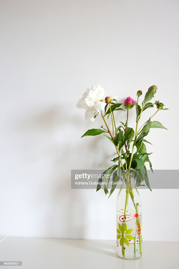 White Flower In Glass Vase On Table Against Wall Stock Photo Getty