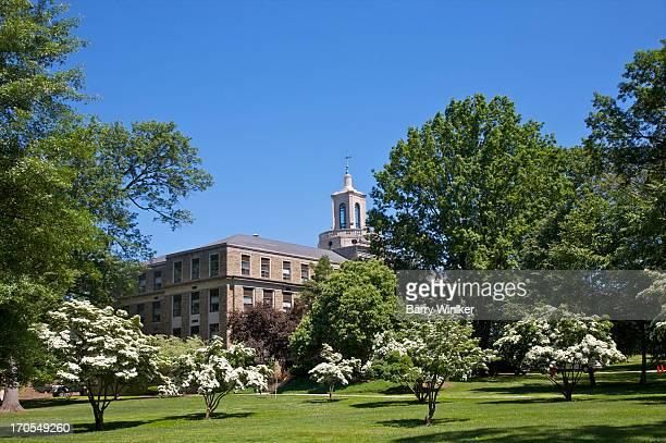 white flowers on trees in front of building - mountain laurel stock pictures, royalty-free photos & images