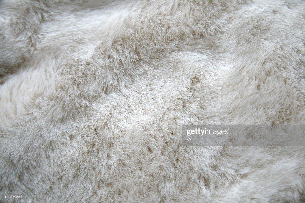 White fur : Stock-Foto