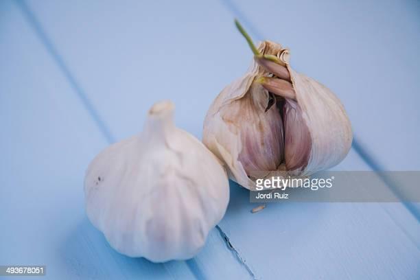 White garlic bulb