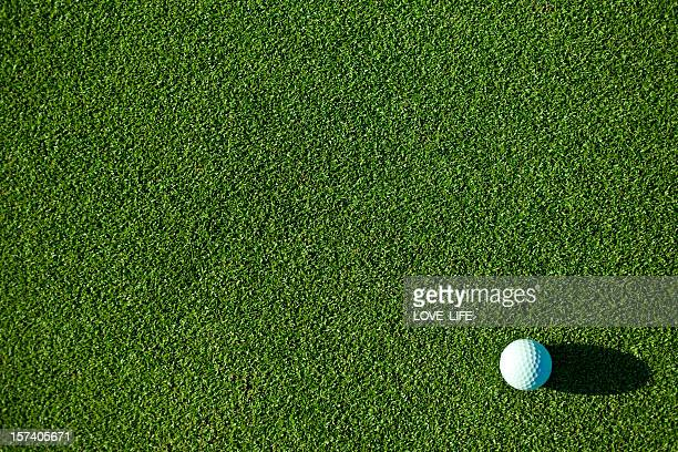 A white golf ball on pristine green grass