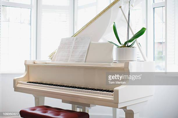 white grand piano - grand piano stock photos and pictures