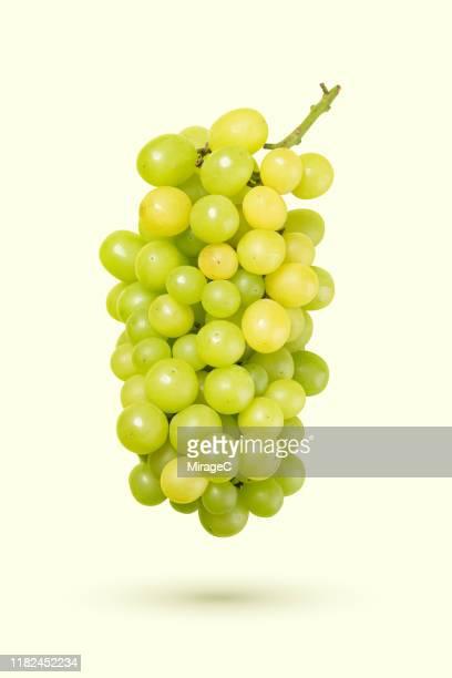 white grape levitation on colored background - ぶどう ストックフォトと画像