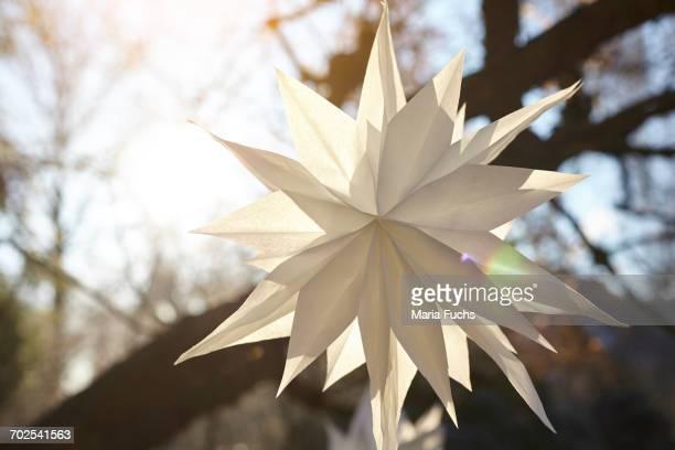 White handmade paper star hanging from sunlit tree branch