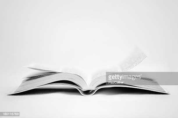 White Holy Bible