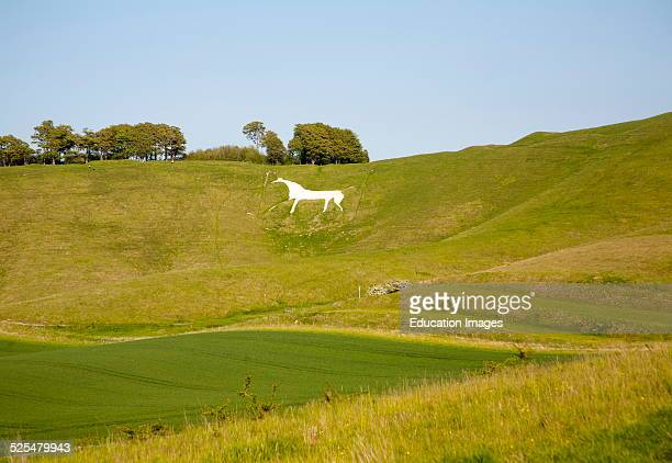 White horse in chalk scarp slope Cherhill Wiltshire England dating form 1780