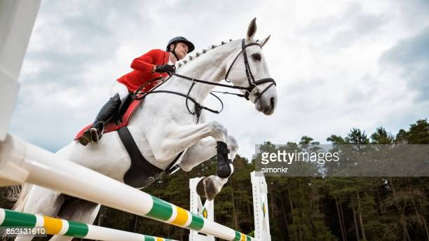 white horse jumping an oxer with his rider - riding boot stock pictures, royalty-free photos & images