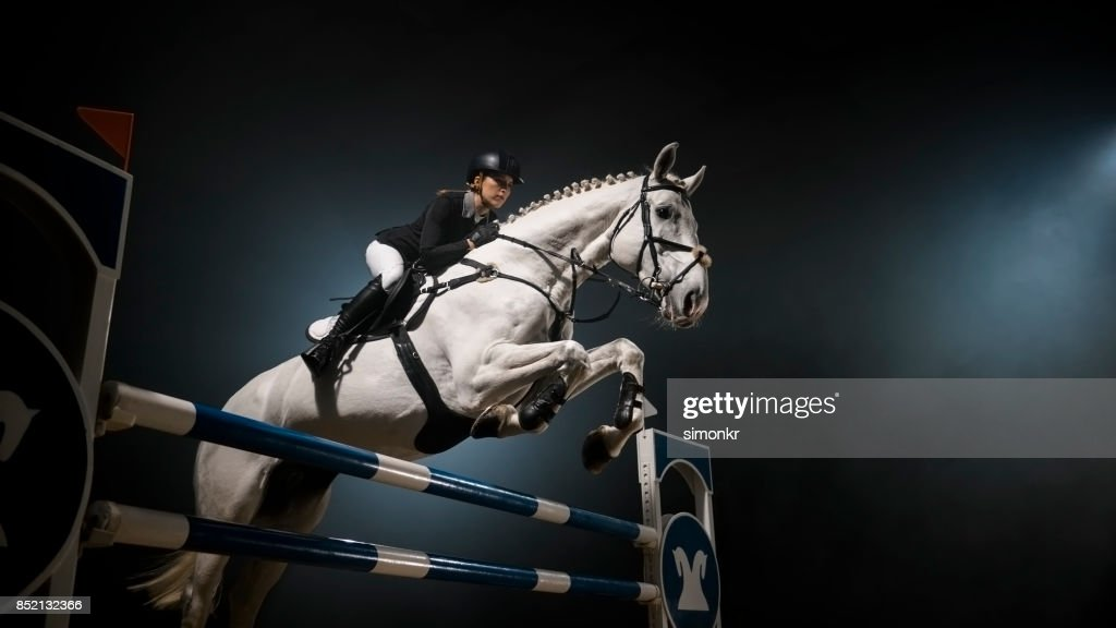White Horse Jumping Over Rail In Arena High Res Stock Photo Getty Images