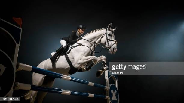 White horse jumping over rail in arena