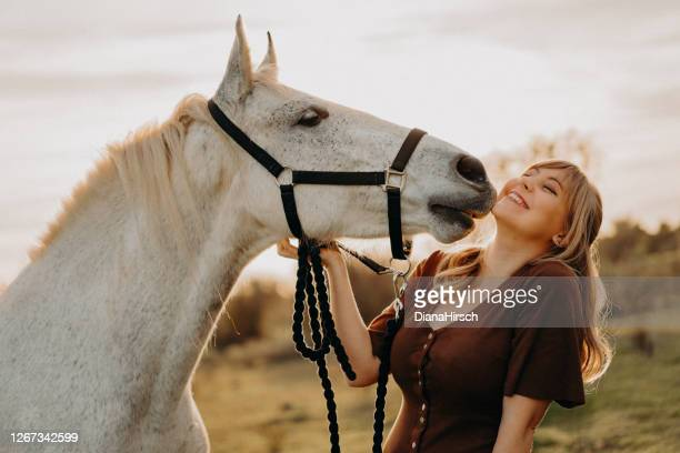 white horse kissing young blond woman - horse stock pictures, royalty-free photos & images