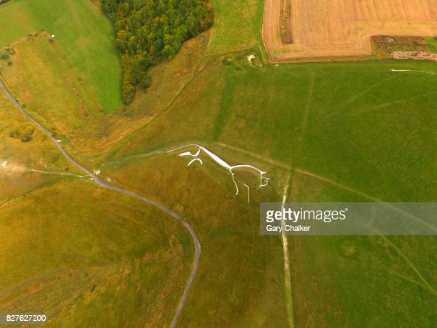 white horse uffington,berkshire - berkshire downs stock pictures, royalty-free photos & images