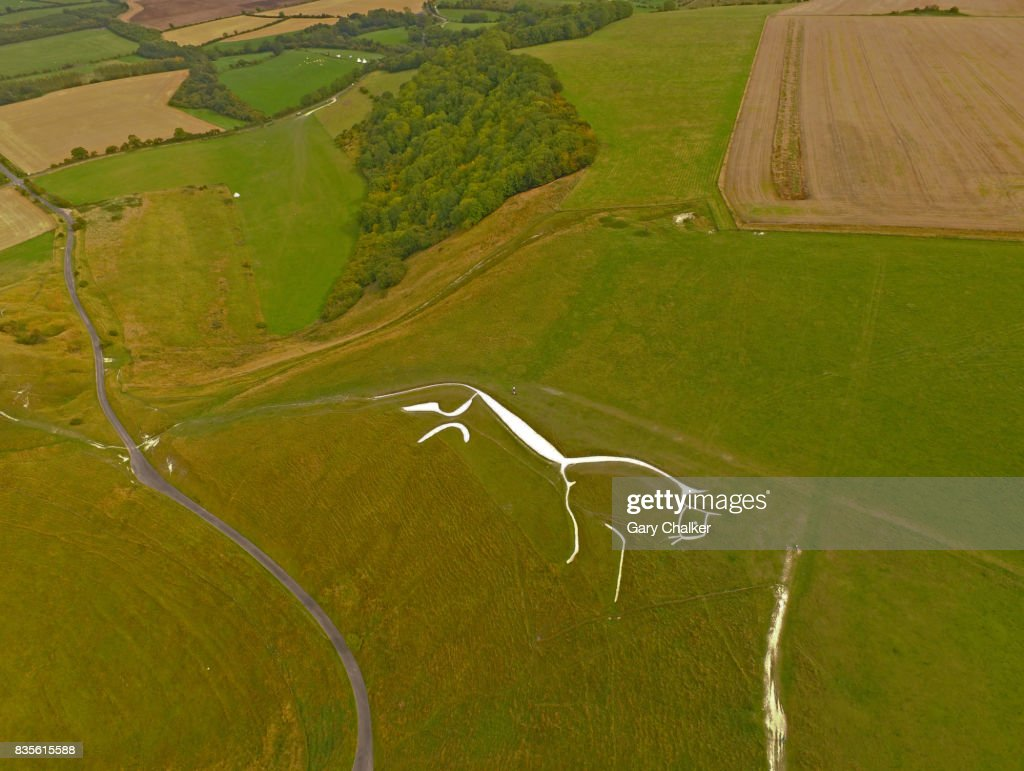 White horse Uffington,Berkshire : ストックフォト